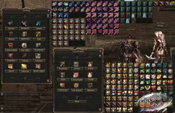 New lineage 2 server